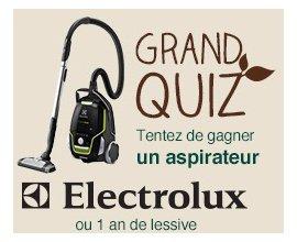 Carrefour: 10 aspirateurs Electrolux et 220 lots d'un an de lessive à gagner