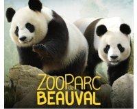 Groupon: Entrée adulte ou enfant pour le Zoo de Beauval à 19,50€ au lieu de 29€