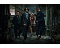 """RTL: Des DVD Harry Potter + des places pour """"Les Animaux Fantastiques"""" à gagner"""