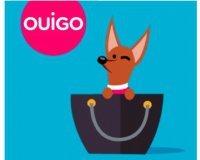 OUIGO: Voyage en train gratuit pour votre animal de compagnie de moins de 6 kg