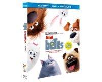 """Chérie FM: 5 combos DVD/Blu-Ray du film """"Comme des Bêtes"""" à gagner"""