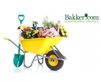 Groupon: Plantes, fleurs et jardinage : payez 20€ le bon d'achat Bakker.com de 40€