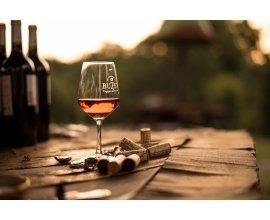 Terre de Vins: 15 coffrets de vin AOC Buzet à gagner