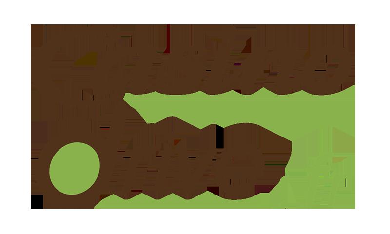Code promo Casino Drive : 15€ de réduction dès 80€ d'achat