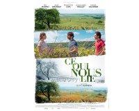 """Terre de Vins: 5 DVD du film """"Ce qui nous lie"""" de Cédric Klapisch à gagner"""