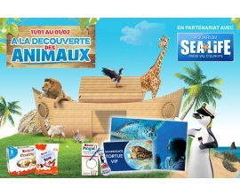 Kinder: Nourrissez les tortues à l'Aquarium de Paris Val d'Europe