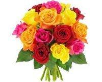 Florajet: 15 roses multicolores à 22€