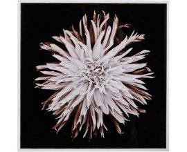 Alinéa: Toile imprimée fleur 20x20cm à 2,34€ au lieu de 3,90€