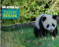 Groupon: -30% sur votre séjour au Zoo de Beauval (entrée + hôtel) pour 2 à 4 personnes à partir de 118€