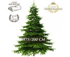 Florajet: Frais de livraison offerts sur votre sapin Nordmann 175-200cm