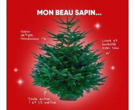 Fnac: 1 sapin de Noël offert dès 150€ d'achat (1000 sapins à gagner)