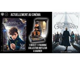 """Ciné Média: Un DVD + une figurine Collector Niffleur du film """"Les Animaux Fantastiques"""" à gagner"""